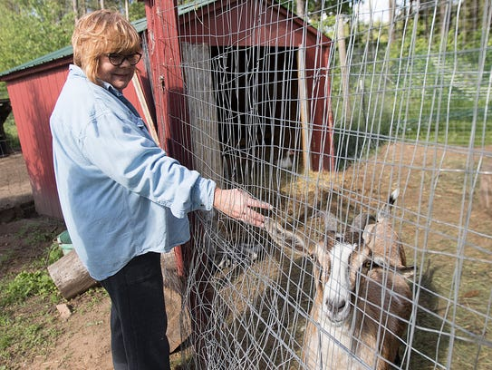 Last Chance Carrell owner Bronwyn Dilley pets one of