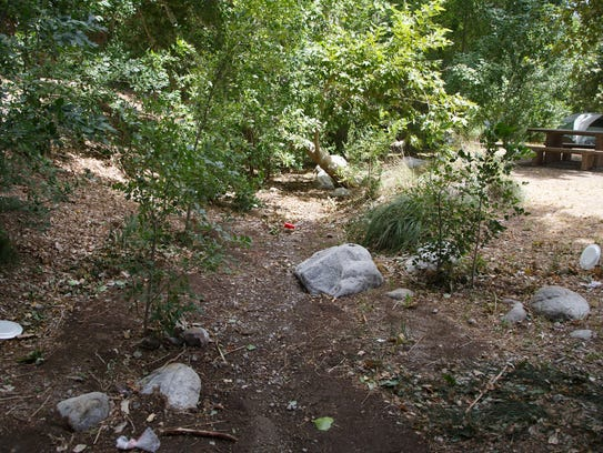Trash lies scattered through a stream bed at Whitewater