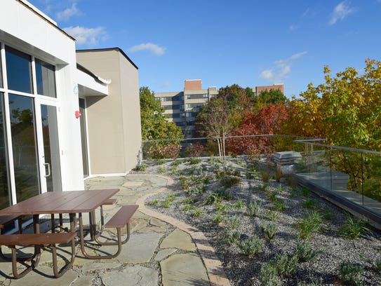 A garden, known as the Green Roof, can be seen on the