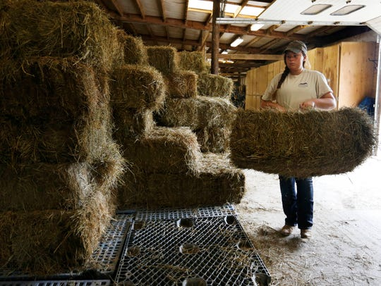 Morgan Hubbard, 17, of West Des Moines pulls bales