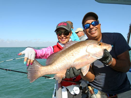 This large mangrove or gray snapper was one of the first snapper caught.
