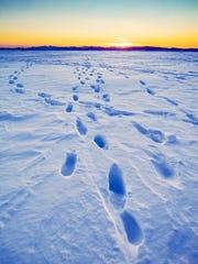 Footprints in Burlington