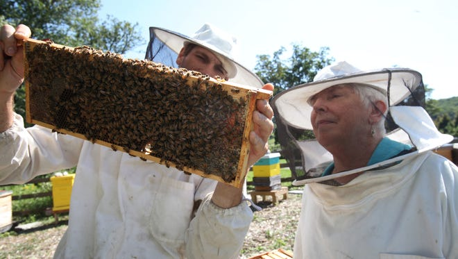 Sister Nancy Erts, a nun with the Dominican Sisters of Hope in Ossining, watches as Dan Carr of Stone Barns in Pocantico Hills, works a beehive at the center.  The nuns spearheaded a successful effort to get the Village of Ossining to pass legislation allowing backyard beekeeping in the village.