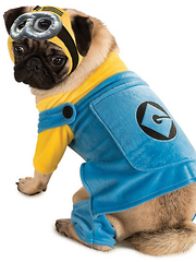 """Minion Dog costume from the movie """"Despicable Me."""""""