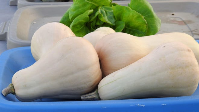 The Laney Walker Farmers Market is opening at 4:30 p.m. today for people to shop for fresh produce, meat and dairy from local farmers. The market will be open monthly.