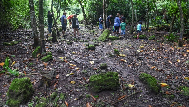Members of the Guerrero and Sablan families remain unbothered by a passing rainshower as they explore an ancient Chamorro latte site, located in the jungles of the Guam National Wildlife Refuge - Ritidian Unit, on Saturday, Aug. 26, 2017.