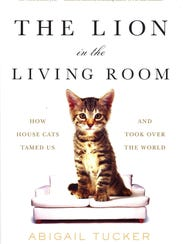 "The cover for ""The Lion in the Living Room."""