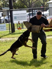 The K-9 Unit shows how powerful the canines can be