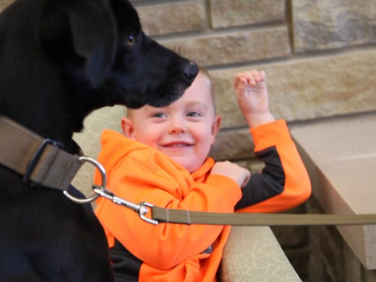 Bosco, the newest Ankeny police K-9, jumps up on Tristan Sommerfeld, who helped raise funds to get Bosco.