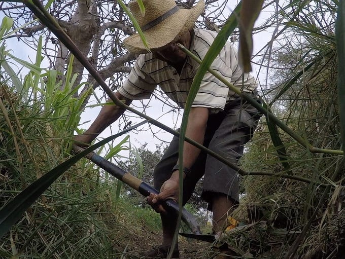 Roberto Huamaní, 69, cleans out a ditch to irrigate