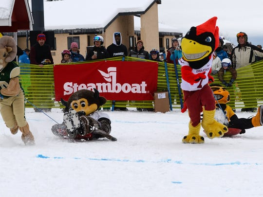 Mascots from Colorado State, Colorado, Iowa State and Iowa compete at the Mascot Stampede in Steamboat Springs, Colo.