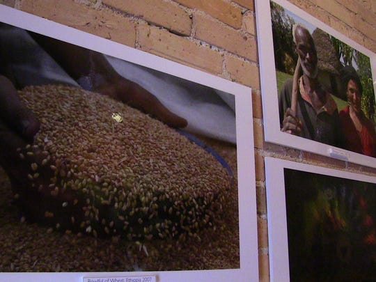 A few of the photographs on display at Brownstone Coffeehouse taken by John Grap of Battle Creek.
