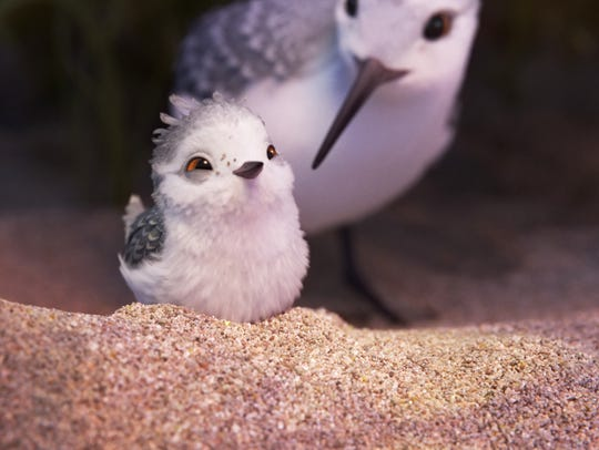 In a new short 'Piper,' a hungry sandpiper hatchling