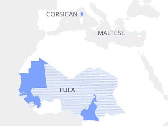 A map of the latest languages added using Facebook's