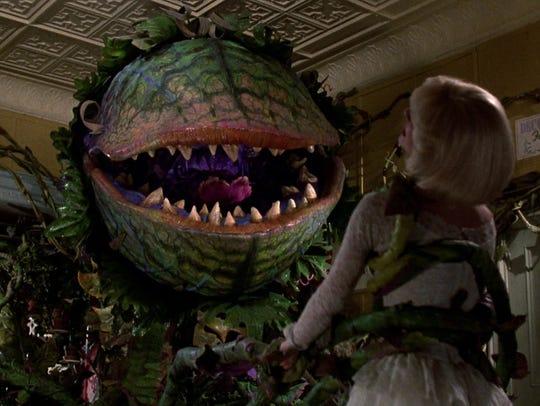 Audrey (Ellen Greene) has plant problems with Audrey