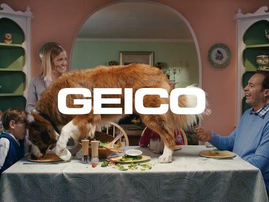 XXX GEICO DOG 02.JPG