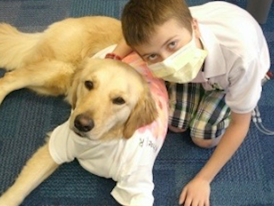 VIDEO THUMBNAIL - Golden retriever senses something off in young patient