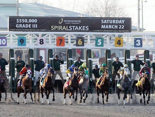 Horses break from the gate.