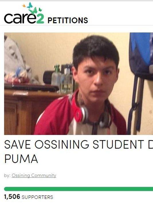 Diego Puma