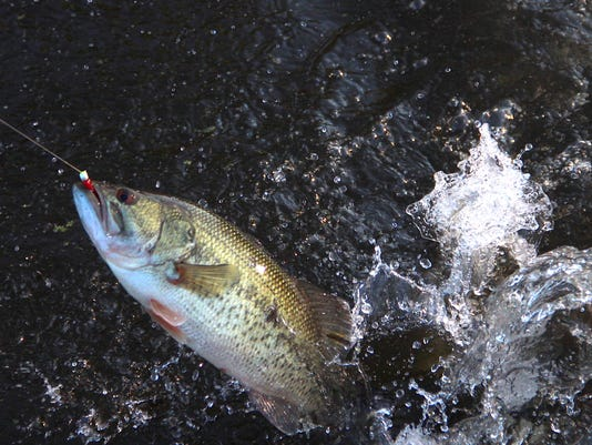 636611287498129756-Fishing-opener-8.jpg