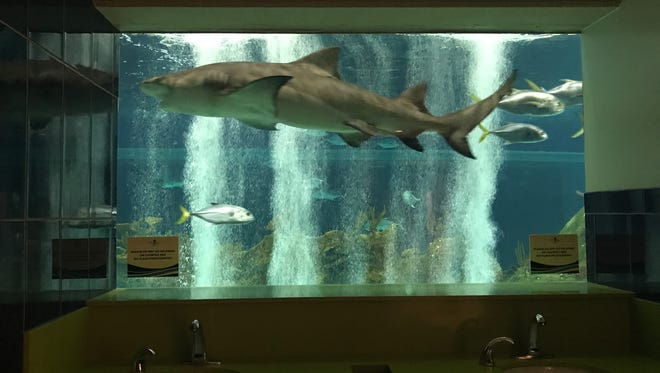 The restrooms at OdySea Aquarium near Scottsdale, which includes a close-up encounter with sharks and other fish in OdySea's 400,000-gallon aquarium, was named America's Best Bathroom in Cintas' national contest.