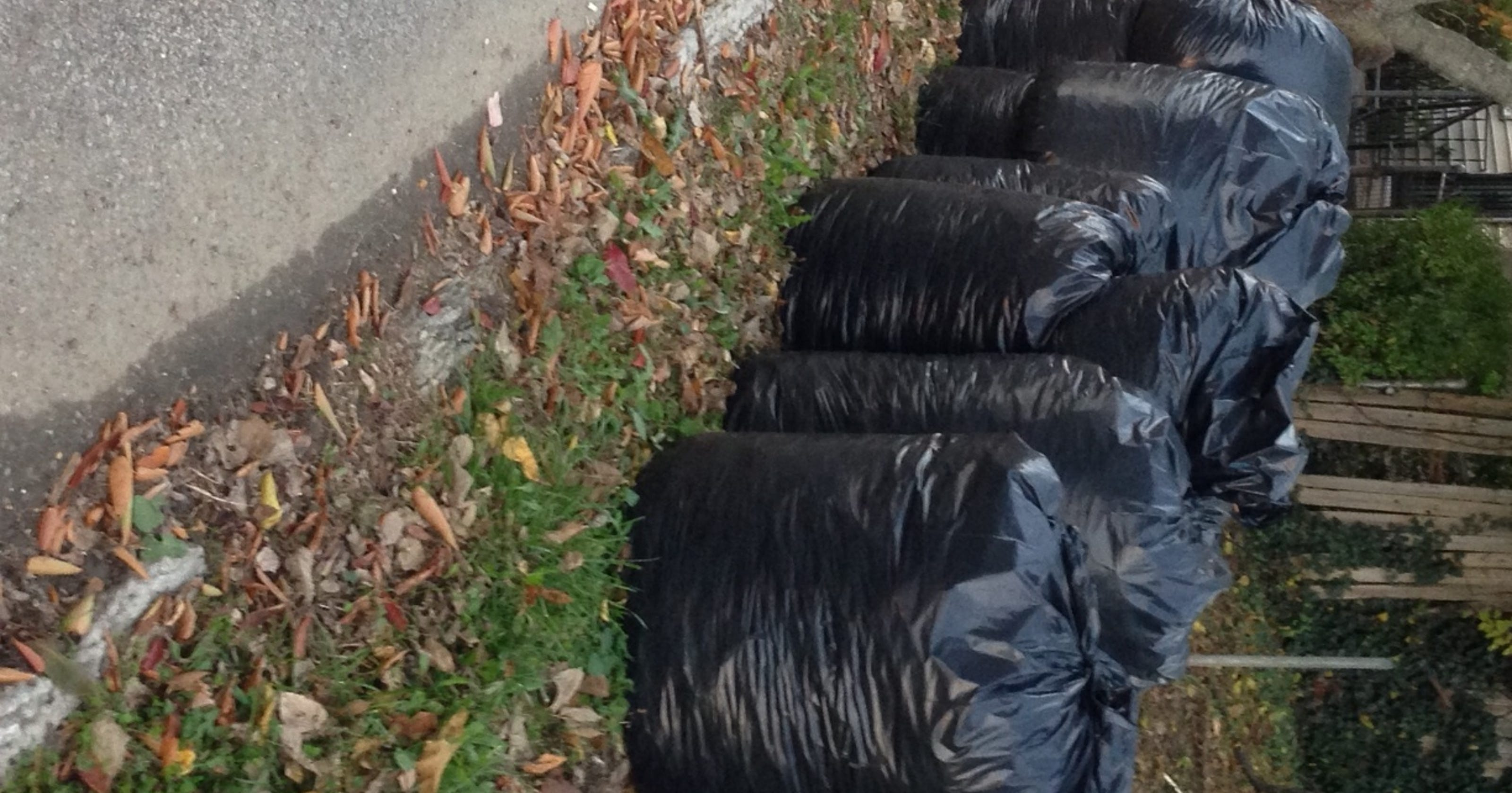 Louisville plastic bag ban is up for discussion again