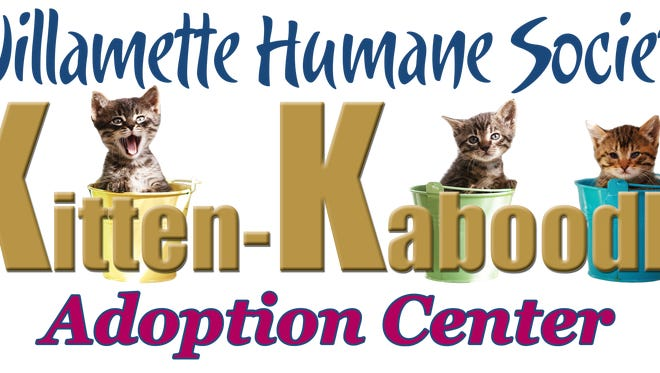 The Kitten-Kaboodle Adoption Center returns to Salem Center Mall on Friday.
