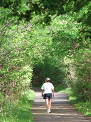 A scenic stroll through a tunnel of trees on the Cofrin Memorial Arboretum trail.