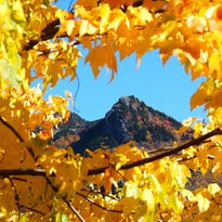 "Guided walks titled ""The Colors of Grandfather"" visit various locations around Grandfather Mountain to showcase a spectacular contrast of autumn hues."