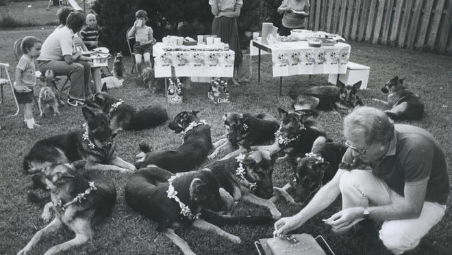 Richard Bolin lights a candle on the doggie's birthday cake in 1983.