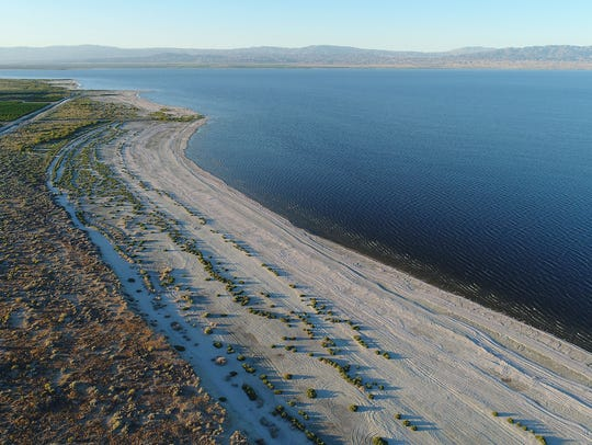 The Salton Sea has been shrinking for years, and fish
