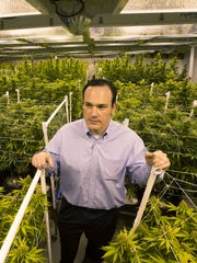 Steve White with Harvest Health and Recreation in a cannabis blooming room at a Northern Arizona facility owned by Harvest, a medical marijuana dispensary on Thursday, Oct. 23, 2014.