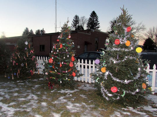 Pre-schoolers from Pine City Elementary School decorated these trees for Southport's Christmas Land.