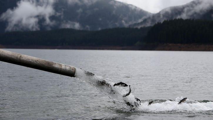 Oregon hunters, anglers fear impact of license fee hike
