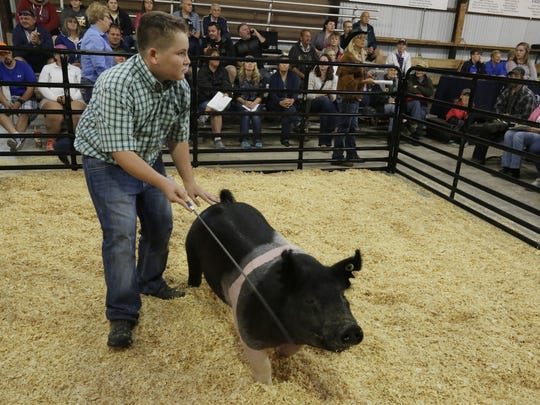 Ethan Kohlman of Plymouth shows his Grand Champion Market Hog during the Animal Market Sale at the Sheboygan County Fair, Thursday, August 31, 2017, in Plymouth, Wis.