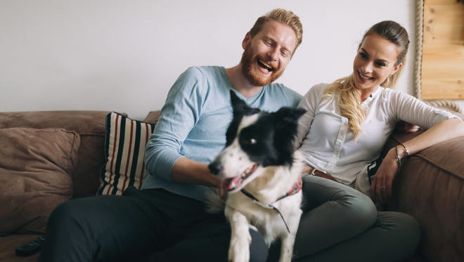 According to a recent Suntrust survey, a third of millennials were influenced more by dogs than marriage or children when purchasing their first home.