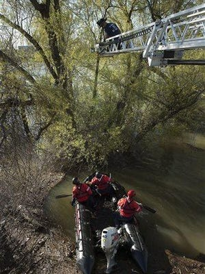 Sacramento Fire Department firefighters and Sacramento Animal Control officers rescue two cats from trees half-submerged due to the recent heavy rains in the Sacramento River near the Tower Bridge on Tuesday in Sacramento, Calif.