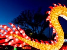 Knoxville's Dragon Lights festival will take your breath away