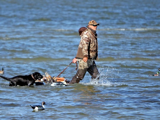 Bay Flats guide Harold Dworaczyk and Jet set out decoys