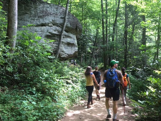 Hikers walk in Pisgah National Forest this summer.