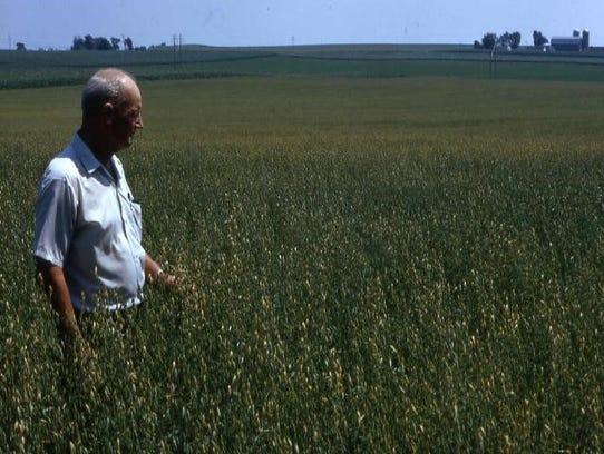WCIA Inspector walking Certified Seed production field