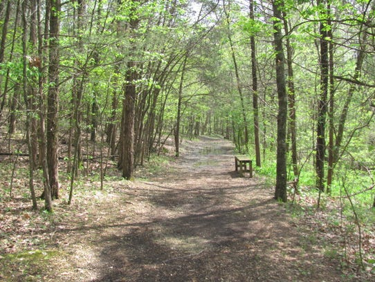 A wooded path leads to the family cemetery at Bonniebrook.
