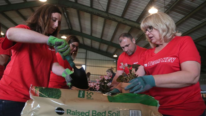 Amanda Boyce (from left to right), Beth Hedrick, Dustin Hosler, and Beth Feldmeier of KeyBank help arrange plants during the Flowerpot project at the Richland County Fairgrounds on Wednesday. 300 potted plants were delivered by members of KeyBank, Richland Bank and the Visiting Nurse Association to nursing homes and shut-ins.