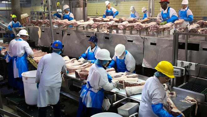 Pork products are handled by various employees as they are prepped for shipment as they make their way down conveyor belts inside Butchertown's JBS pork plant.