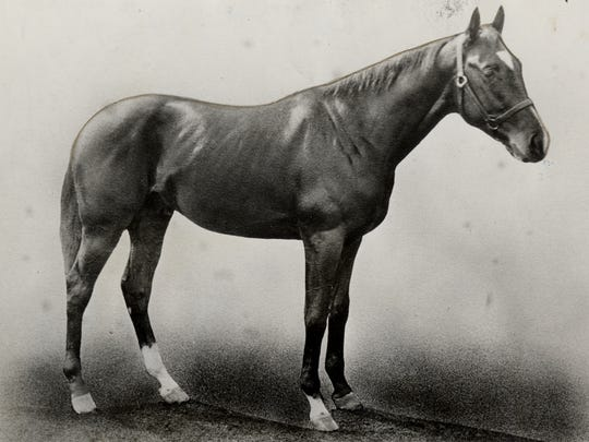 Donau was the winner of the 1910 Kentucky Derby.