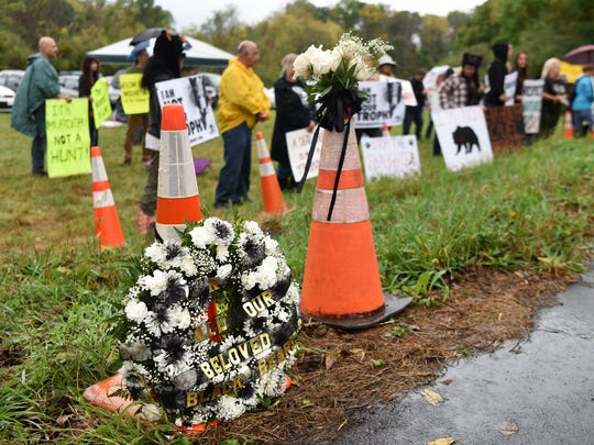 A memorial wreath for all killed black bears rests