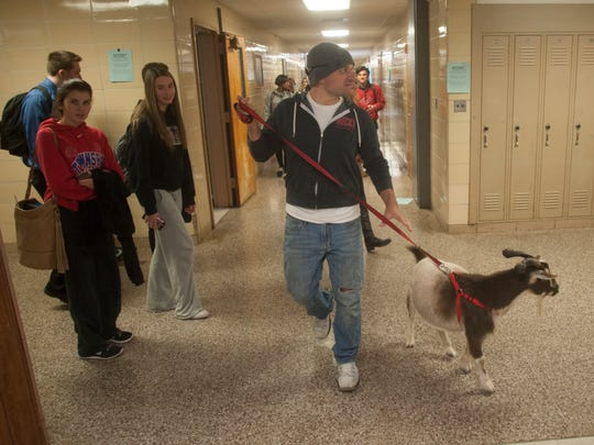 Anthony Mazzio and his goat Billy walked the halls of Washington Township High School during a visit to educate on animal rescue awareness.