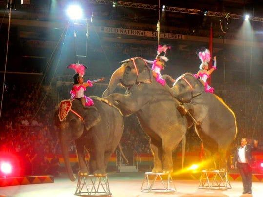 -Shrine circus elephants.jpg_20130409.jpg