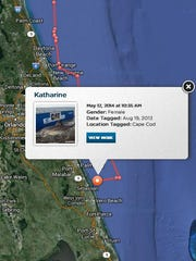 Where's Katharine, the great white shark? Right off the Brevard County coastline, as of 10:35 a.m.