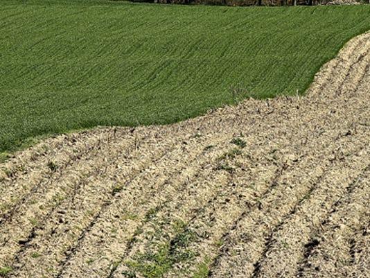 FARMINGICON_01-C.jpg